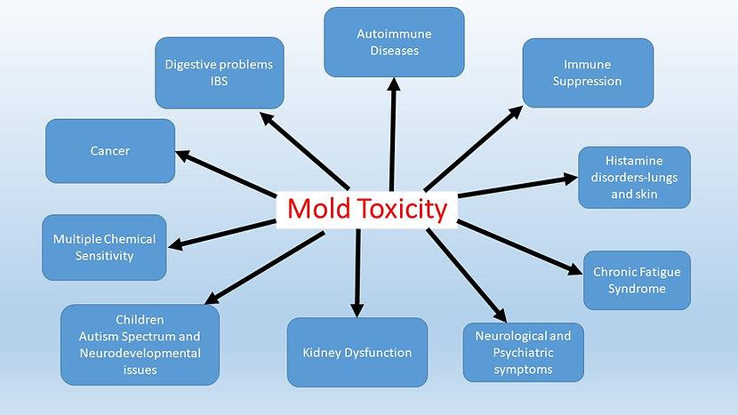 Mold Toxicity.jpg