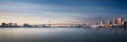 "Silence of Rainbow Bridge Profile""Co"