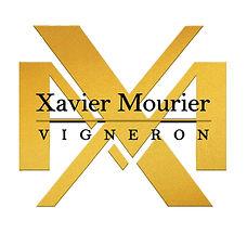 logo XAVIER  MORION.jpg