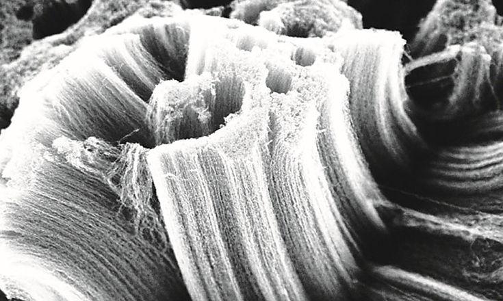 Nanotuburi de carbon crescute prin CVD
