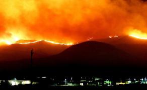2020 : l'été des feux de forêt