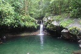 Toute la Nature de la Guadeloupe à vos pieds !
