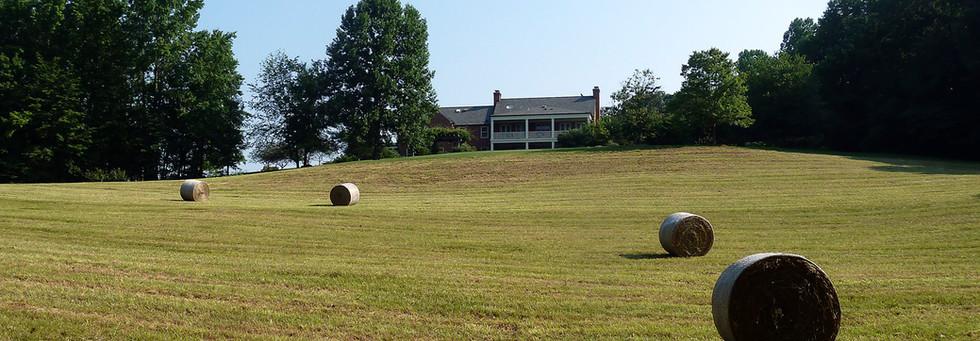 Hayfields Backyard