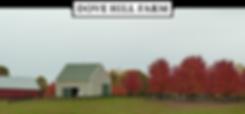 205_Mill_Swamp_Rd_Dove_Hill_Farm_Storgae_Buildings