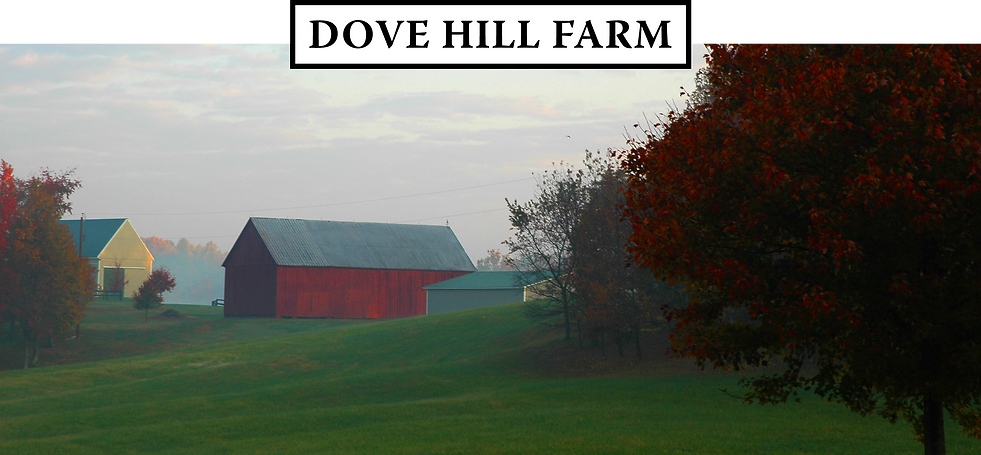 DHF Header_Red Barn.png