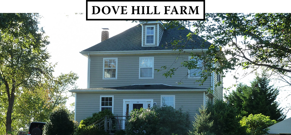 205_Mill_Swamp_Rd_Dove_Hill_Farm_Caretaker_House
