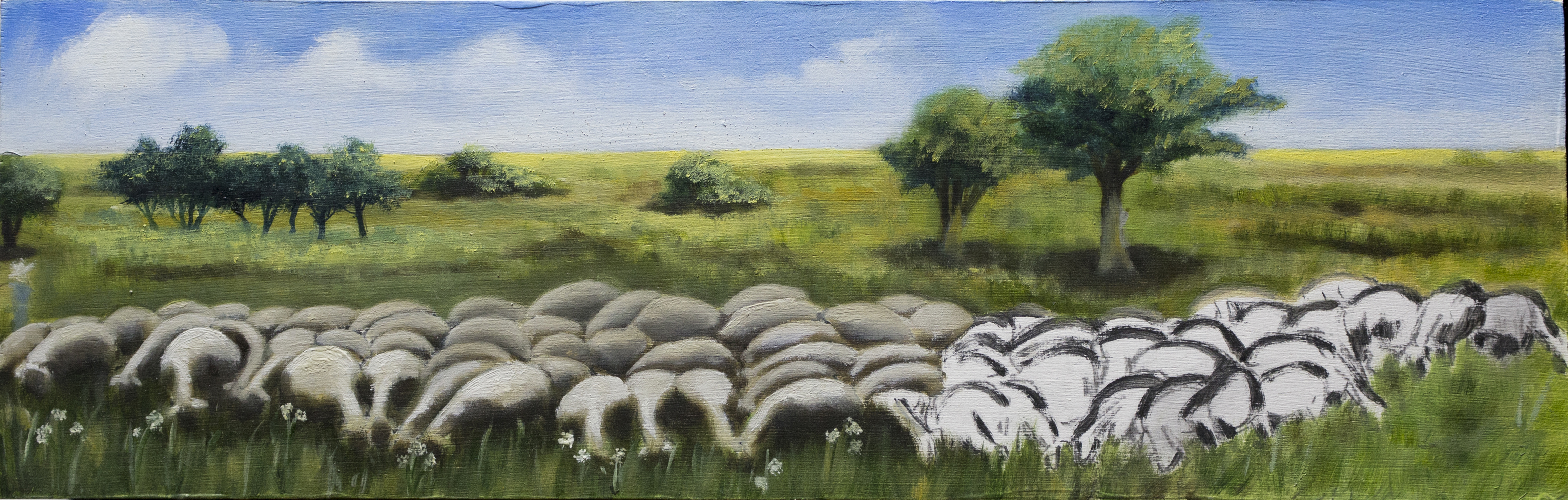 The Sheep. 2010.