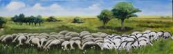 The Sheep. 2010.
