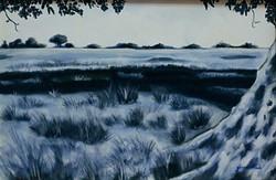 Tree shadow. 2008.