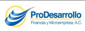 Prodesarrollo.png