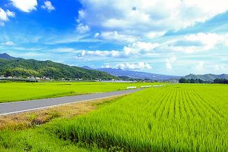 川場村AdobeStock_217800360.jpeg