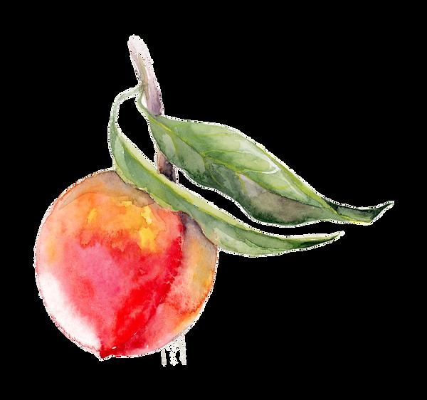 peach22.png