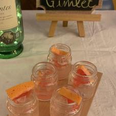 Citrus Gimlet (vodka)