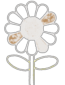 white full Stand up flower.png