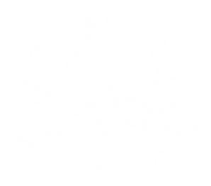 WHITE_SUCCULENT-02.png