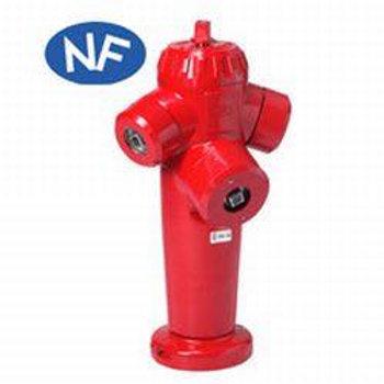Poteau d'incendie à prises apparentes Saphir DN 65 et 80 PFA 16 Bride ISO PN 10/