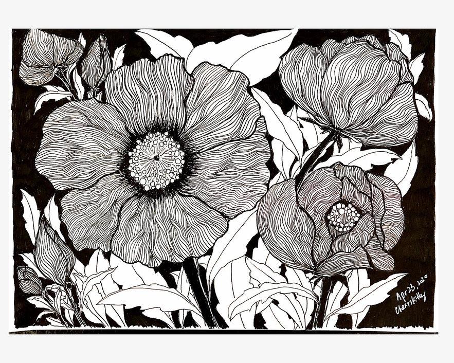 #159 flowers
