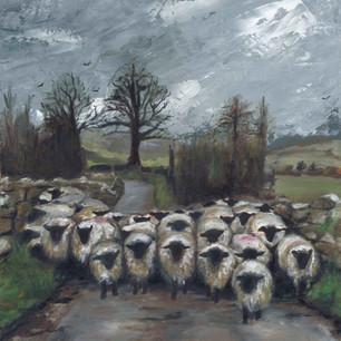 Ewe shall not pass !