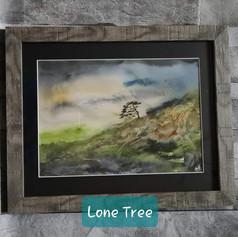 Lone Tree, Northumberland.