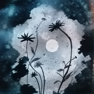 Moonlight A4 Water Colour SOLD