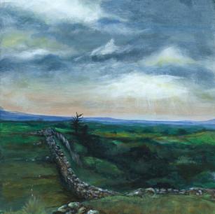 Hadrian's wall , Walltown , Northumberland
