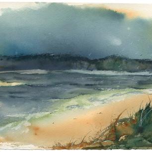 Gull shore