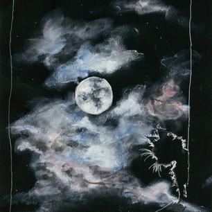 Moonlight curiosity