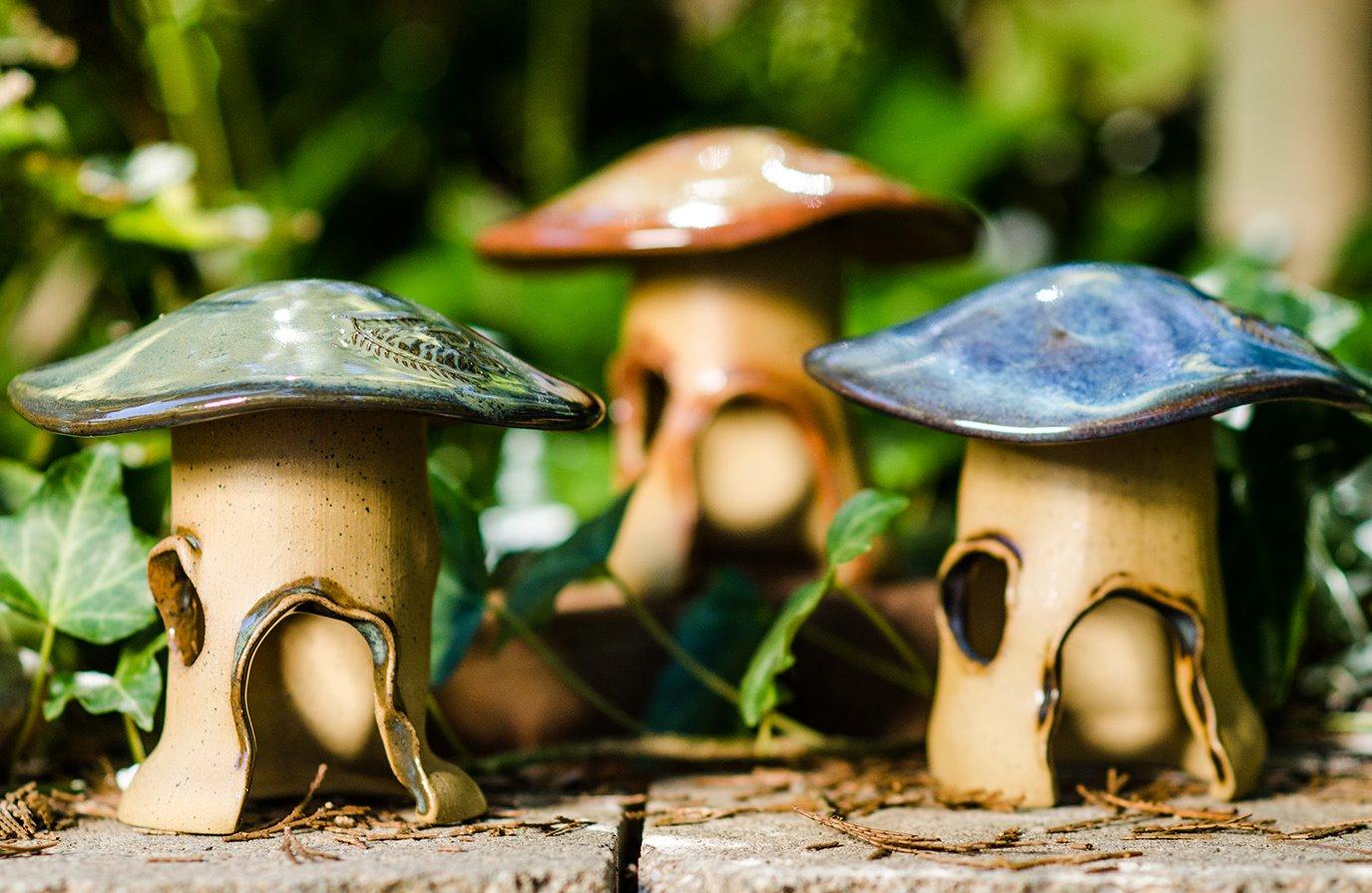 Mushroom Frog House_edited
