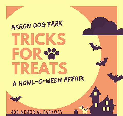 Trick or Treating for Dogs Costume Contest for Dogs.png