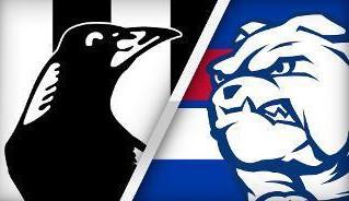 AFL - Round 10
