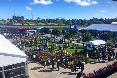 Home Straight Enclosure, Flemington. Melbourne Cup Carnival