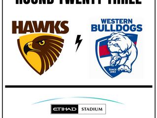 AFL - Round 23