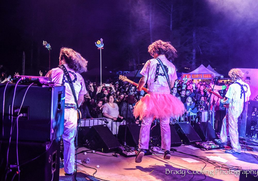 Pigeons in pink outfits on stage