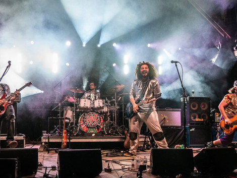 Pigeons Playing Ping Pong Rock Domefest With 1-Set Song, Horns, Side Projects & More