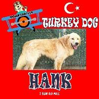HANK_edited.jpg