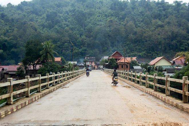 Bridge loas forest