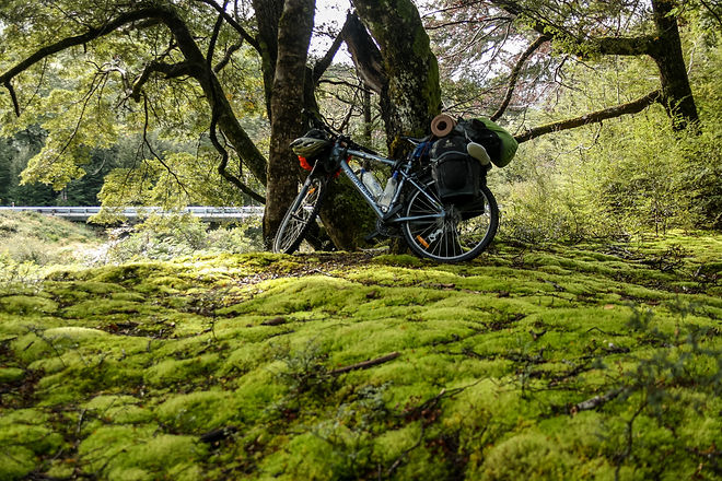 Touring bicycle new zealand