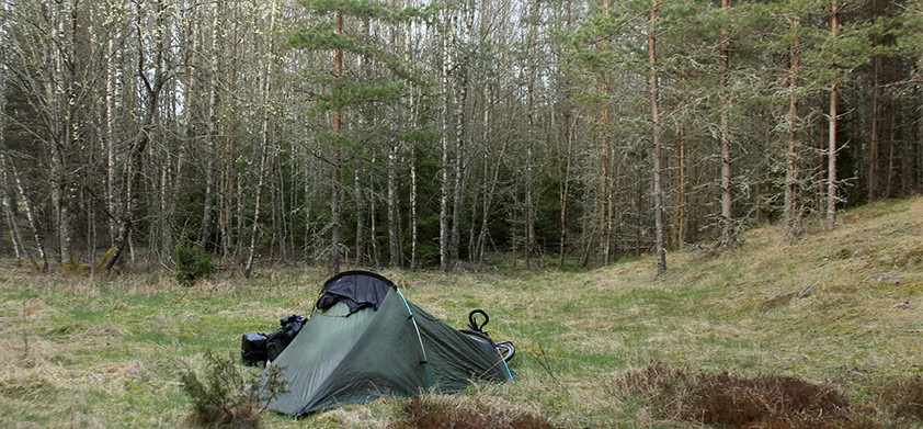 Sweden: Volvos and forests