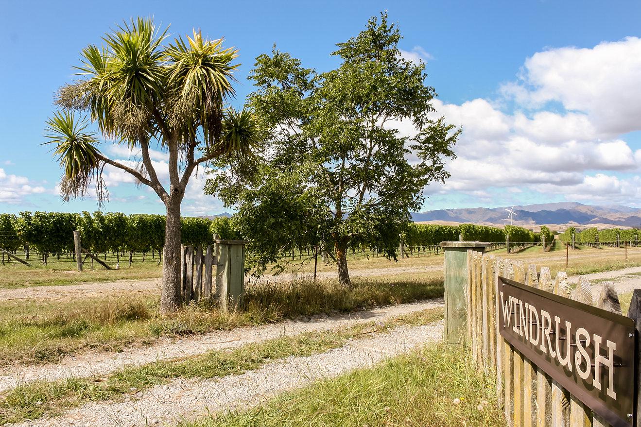 New Zealand farm gate