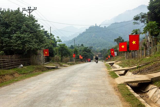 Vietnamese flags