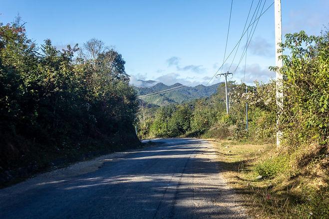 Jungle laos