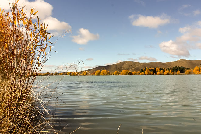 Otago new zealand