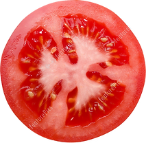 the-COREtec-tomato-small.png
