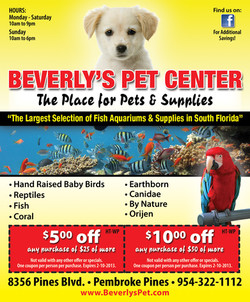 AD-Beverlys Pet-1012.jpg