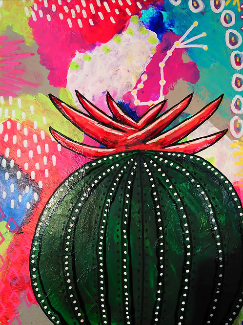 Scorpio Constellation Cactus
