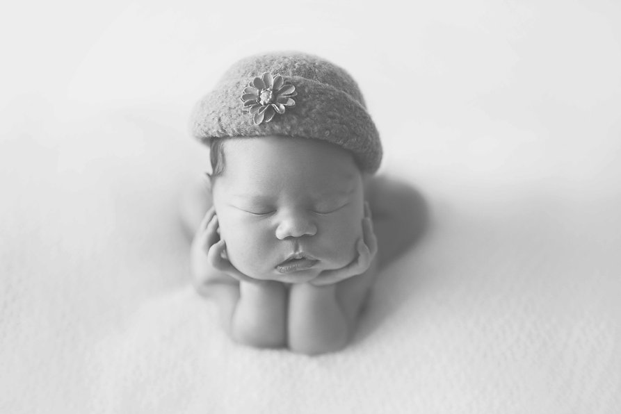 Four Little Frog's Photography _ Hamilto