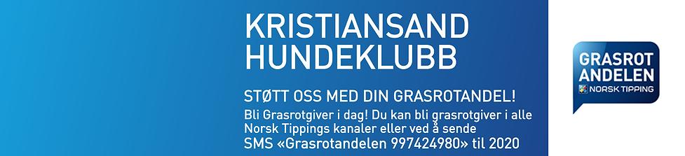 Grasrot-Plakat-Liggende.png