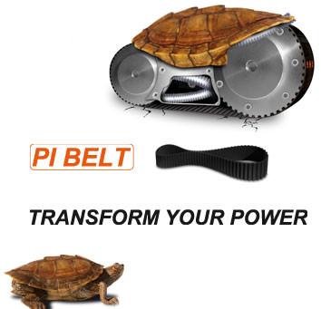 Supporto tecnico e assistenza su cinghie Pi-BELT