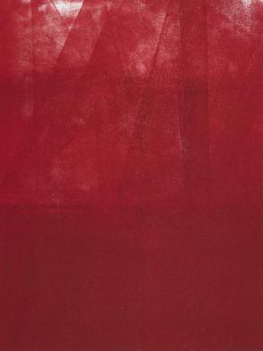 Palpitant - Monotype  30x40 cm