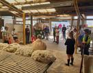 resizedimage500393-NZ-Young-Farmers-memb